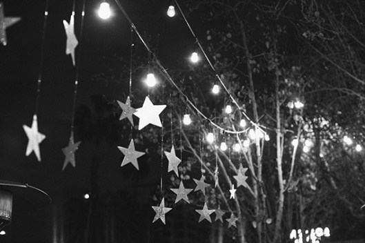 stars-and-lights-100layercake