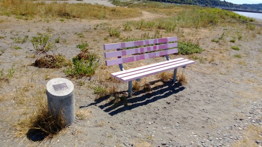 bench at golden garden-sparrowsoirees