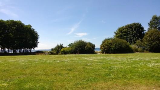 field to beach- sparrow soirees