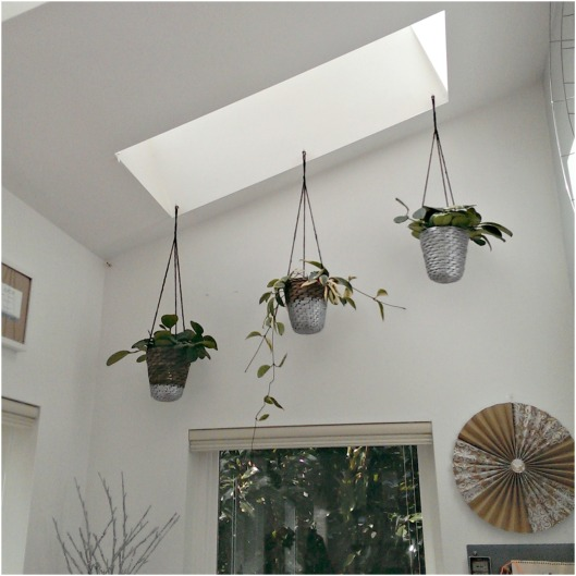 hanging-baskets-diy2-sparrowsoirees